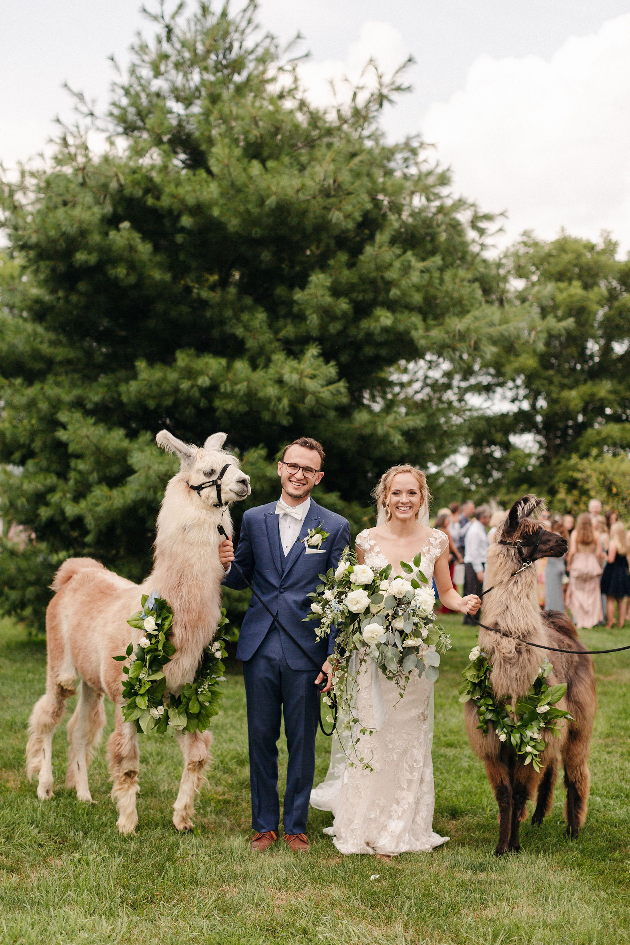 custom wedding planner ann arbor michigan event design florals bridesmaids bouquets farm outdoor ceremony llamas