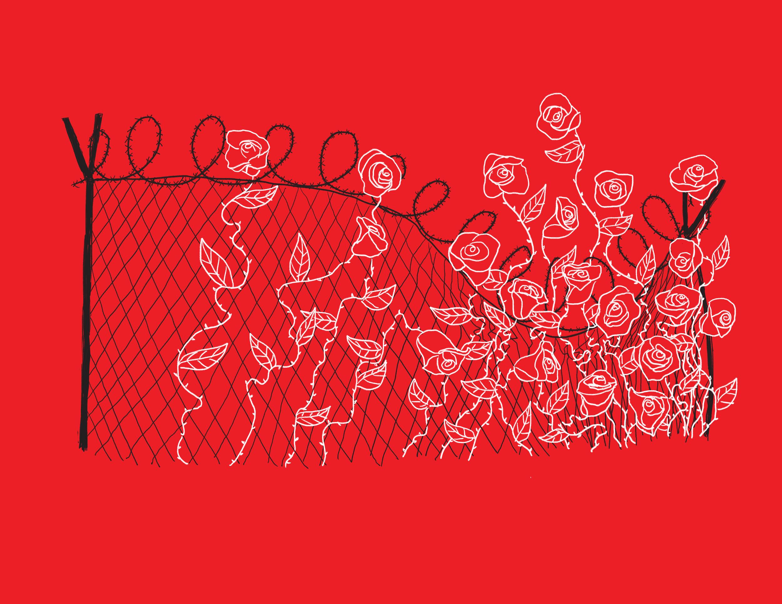 Solidarity at the Border -