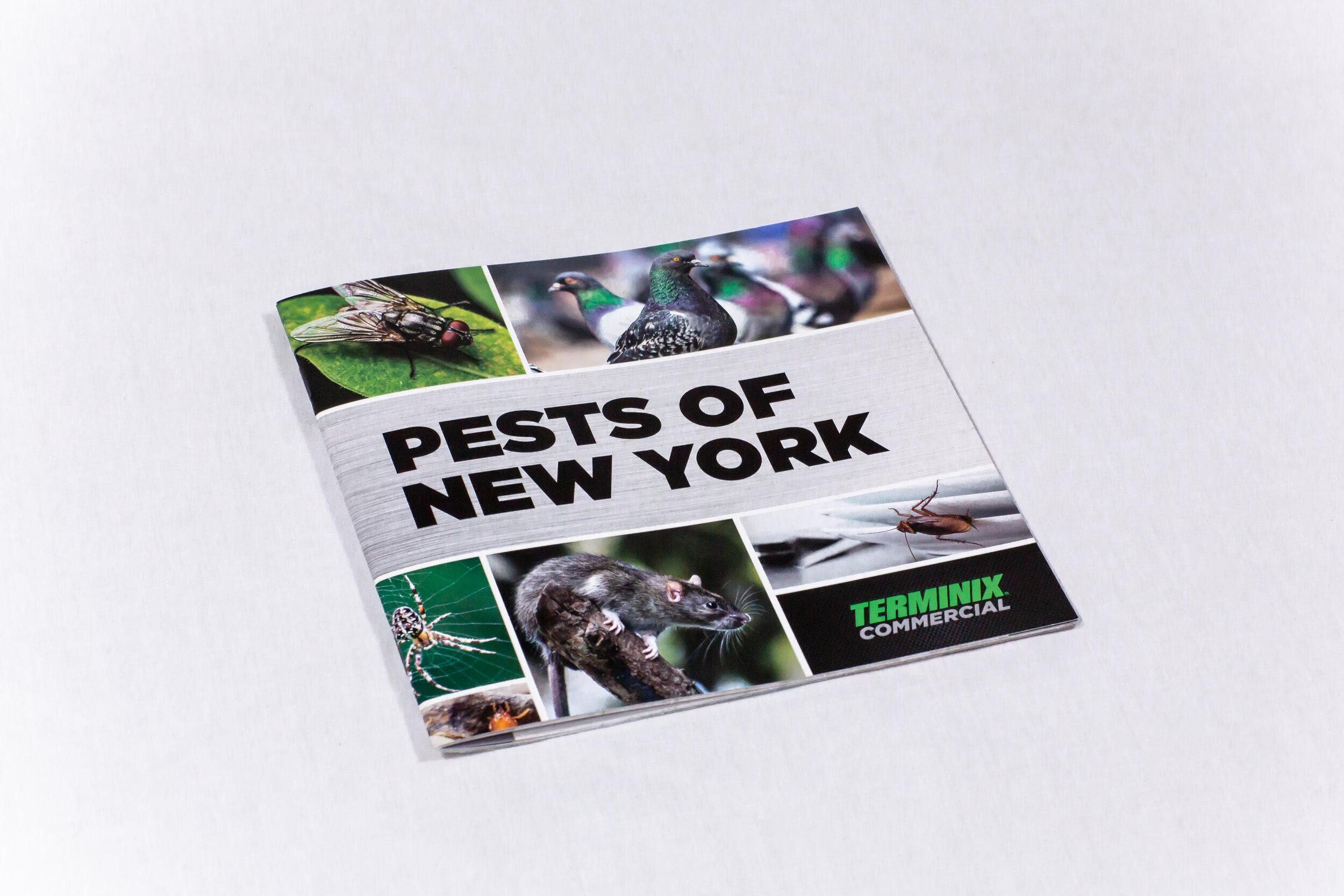 TMXC_NYC_Pest_Brochure_1.jpg