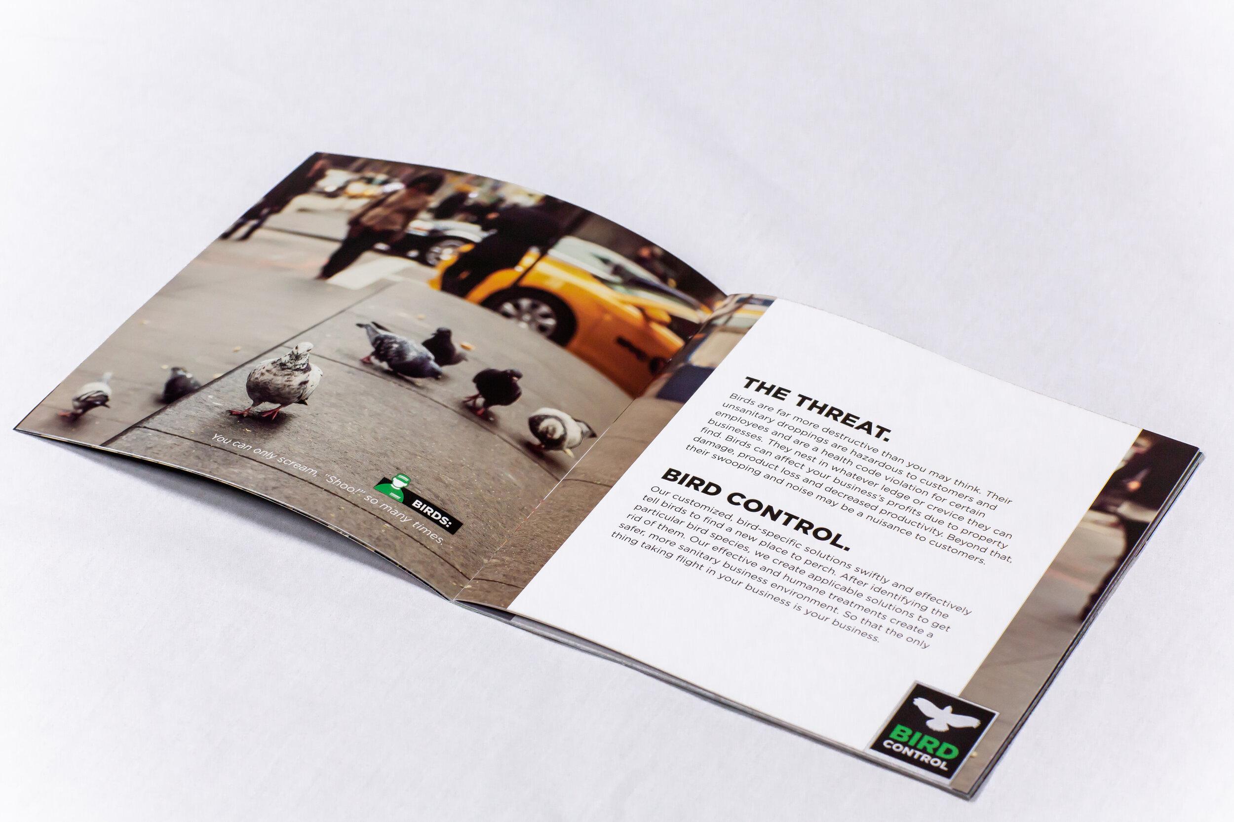 TMXC_NYC_Pest_Brochure_2.jpg