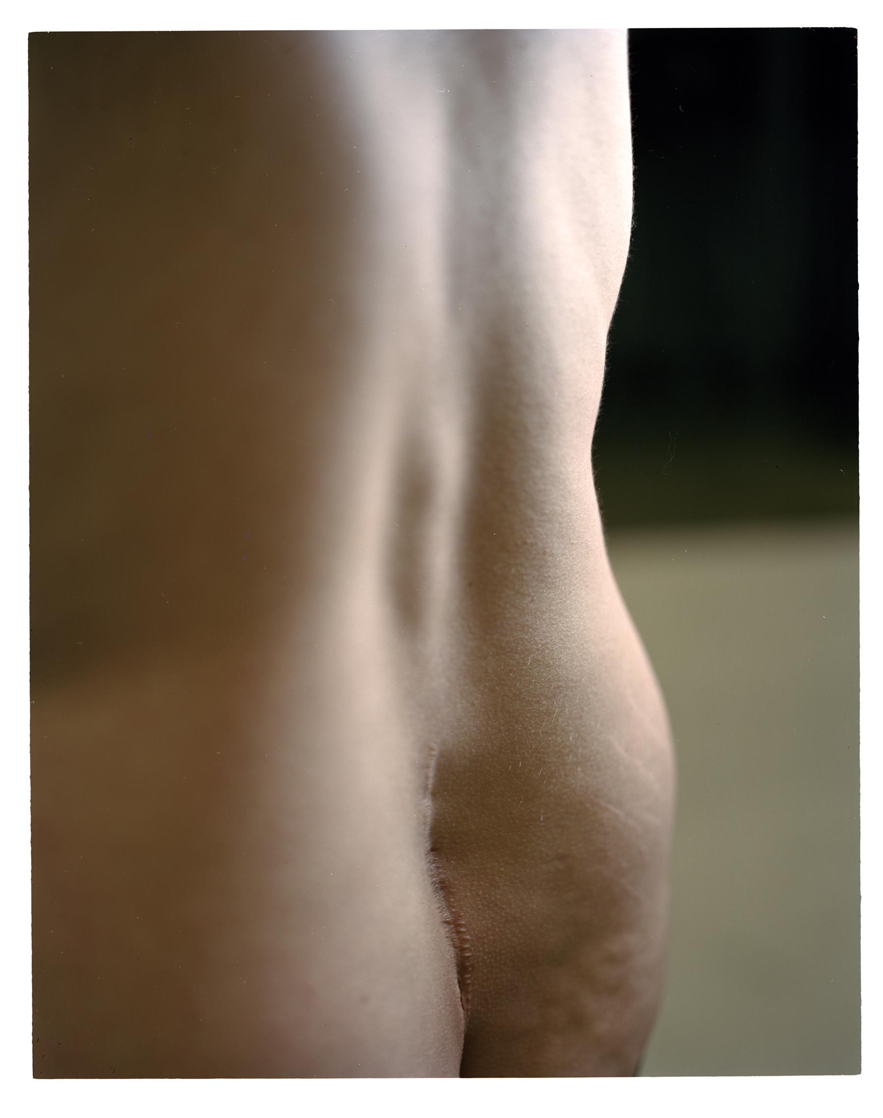scar full body.jpg