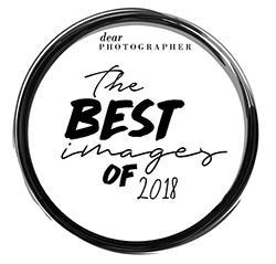 Olive Branch Photography by Steph, LLC was voted  The Best Images of 2018  within the Dear Photographer Magazine!  Lifestyle Mommy + Me Session