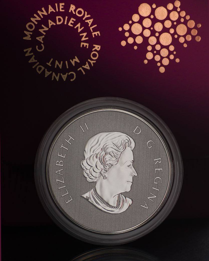 Royal Canadian Silver Coin at RDClicks Photography Kamloops