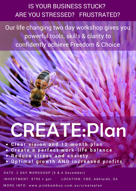 CREATE:Plan workshop Adelaide