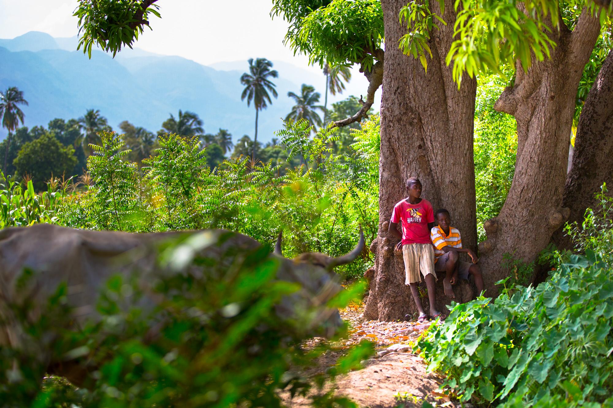 8AFCORTES_HAITI_HI-0787.jpg
