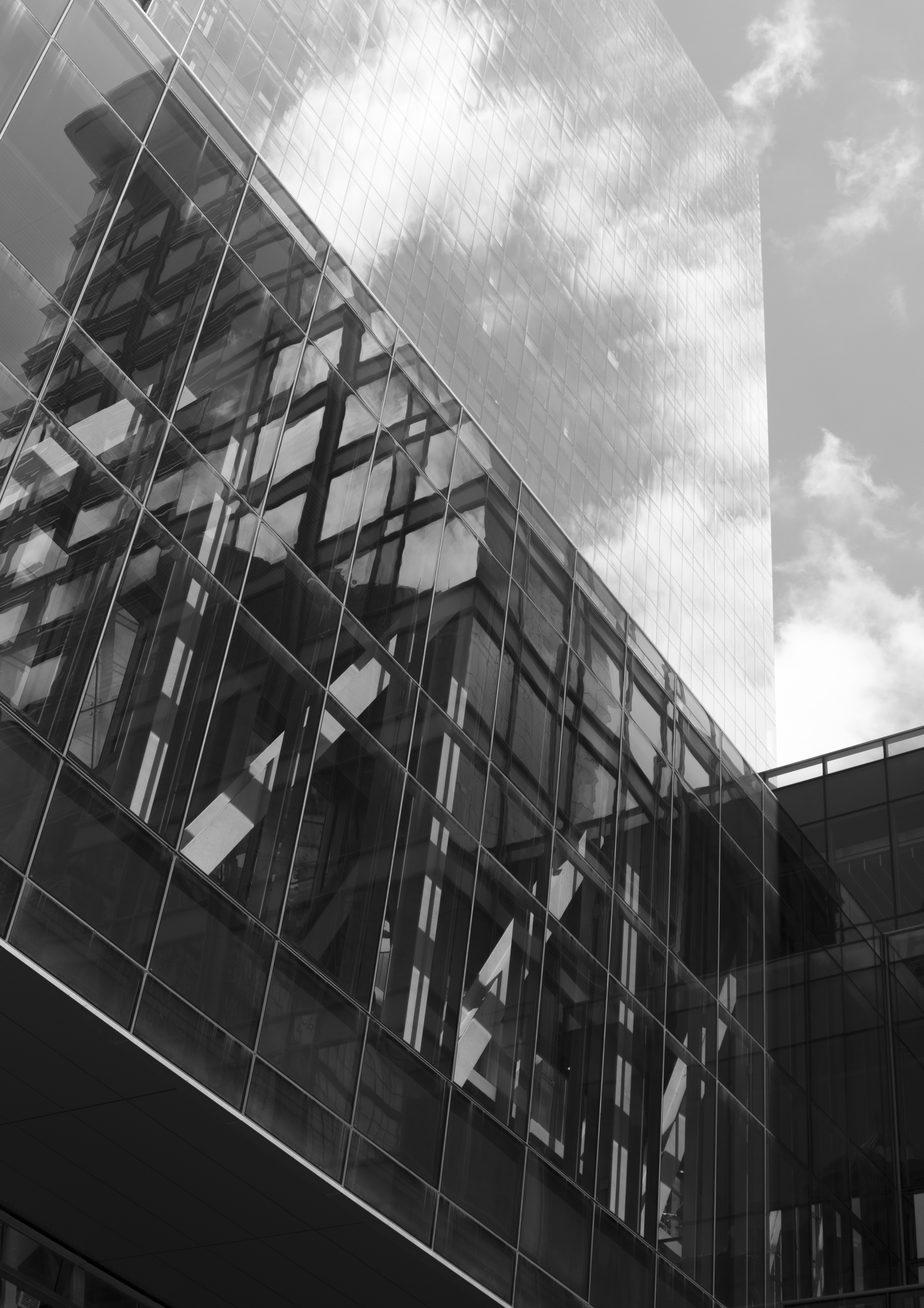 Remember to Look Up Now and Again - Photography taken in downtown Charlotte, NC.