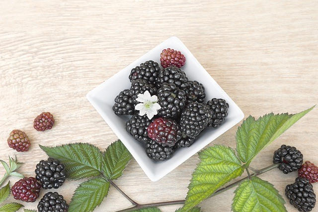 A cup of blackberries can have as much fiber as a cup of oatmeal 😋. #blackberries #fiber #nidolifestyle #foodasmedicine  #fiberrichfoods.