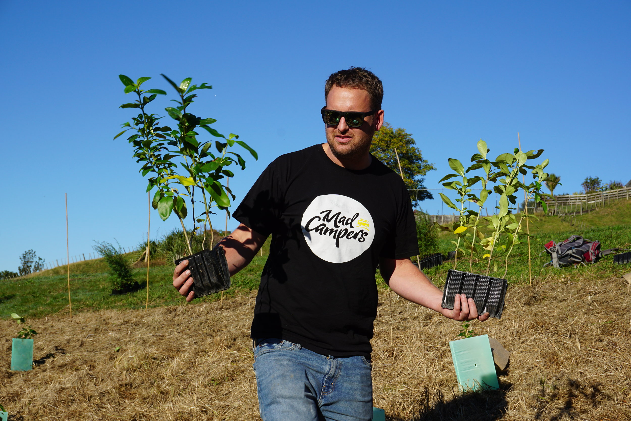 Planting Native Trees in Auckland with Mad Campers