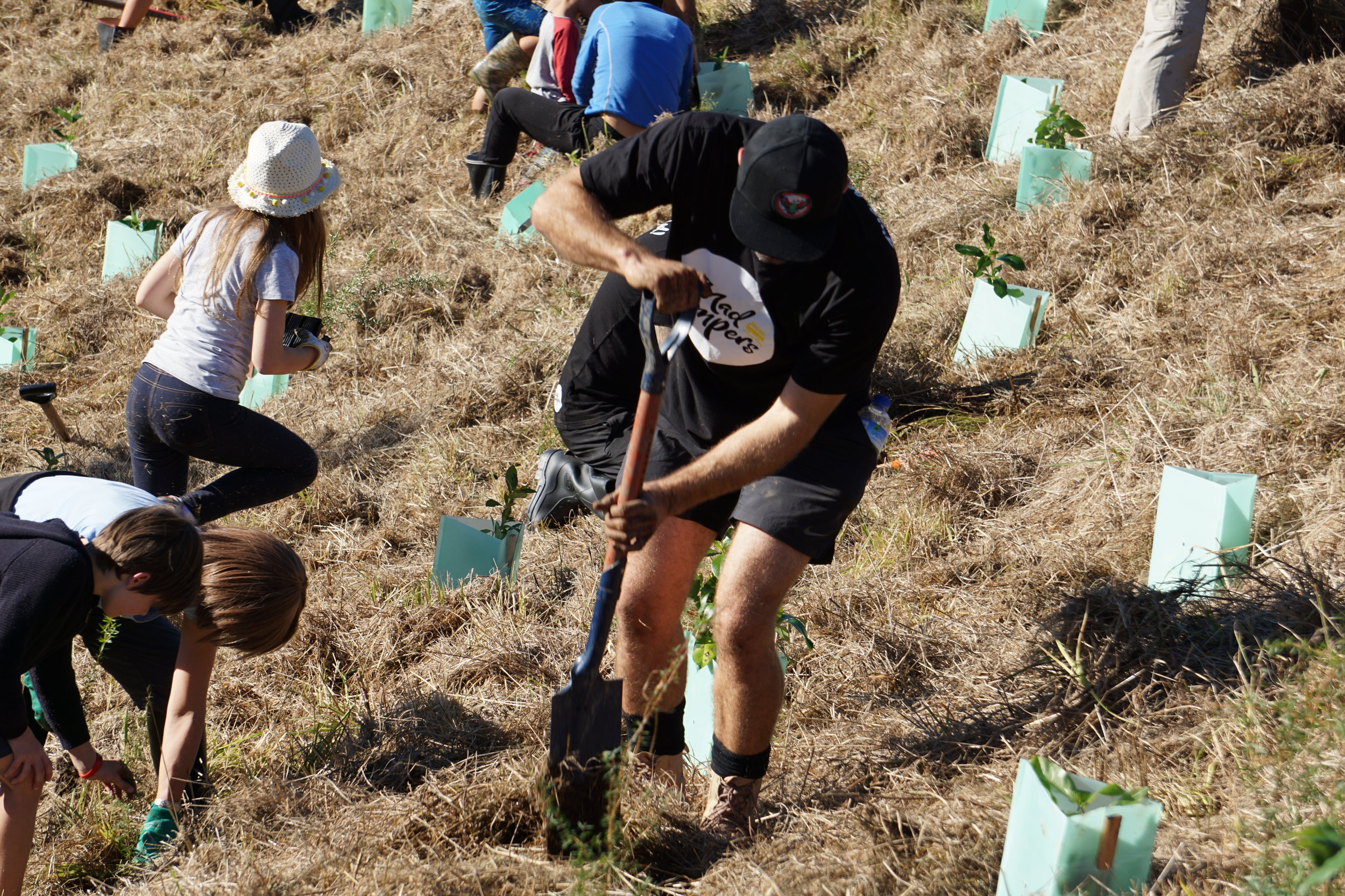 Trees That Count Planting Native Mad Campers