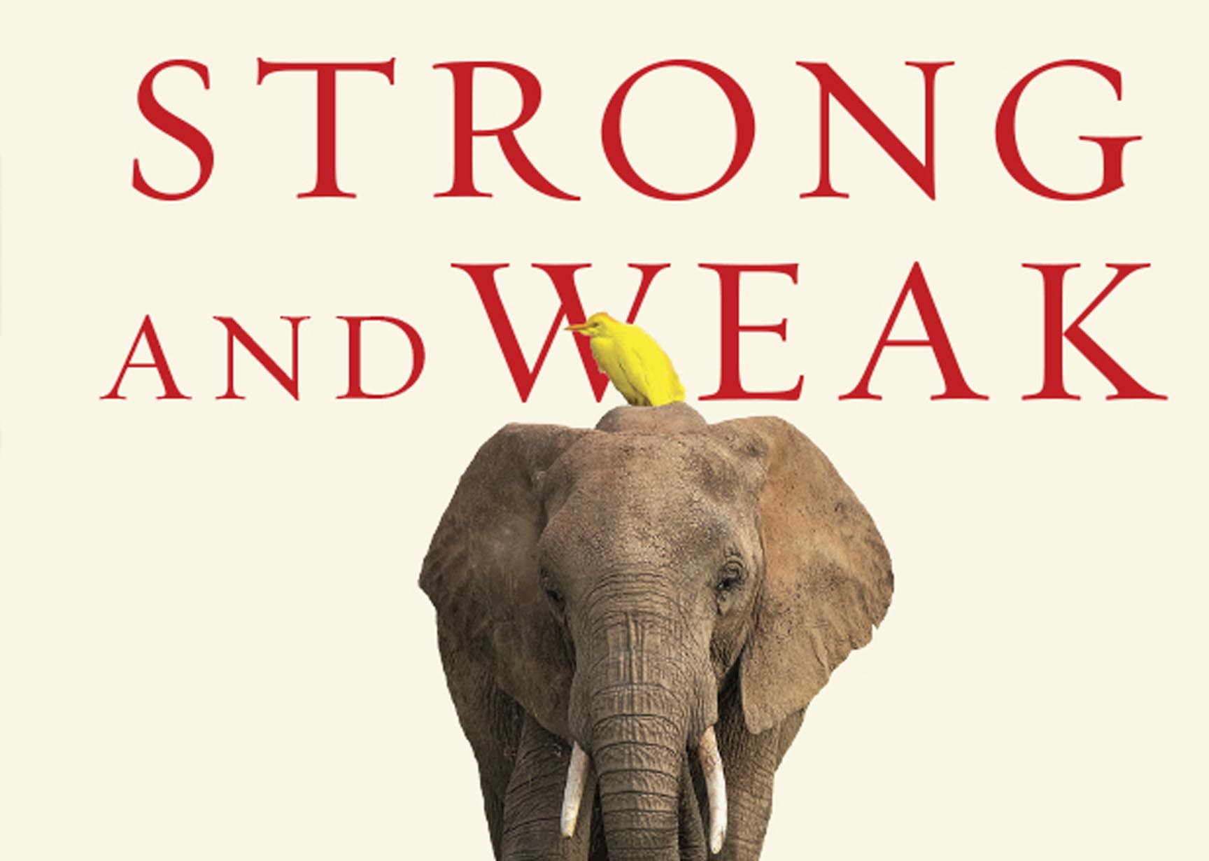 Strong and Weak: Embracing a Life of Love, Risk and True Flourishing - Andy Crouch