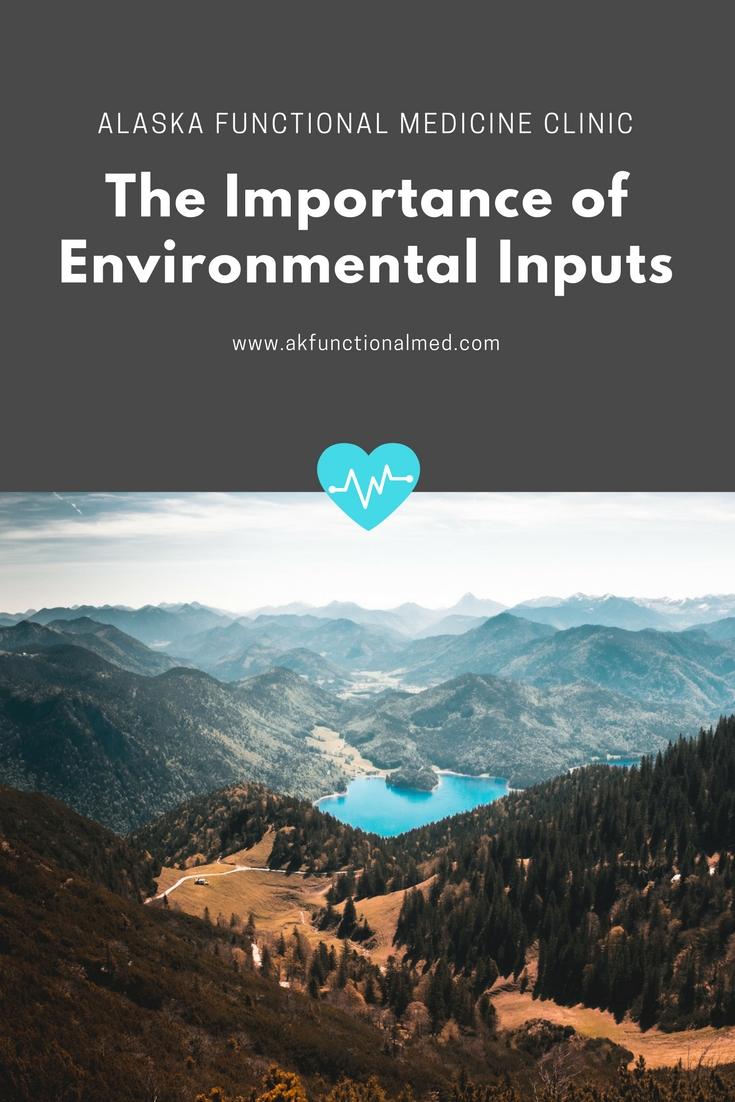 environmental inputs