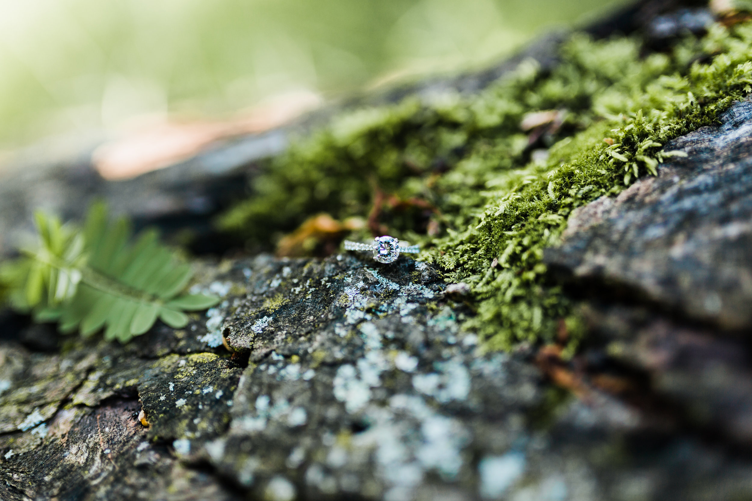 engagement ring photography - md engagement session - nature