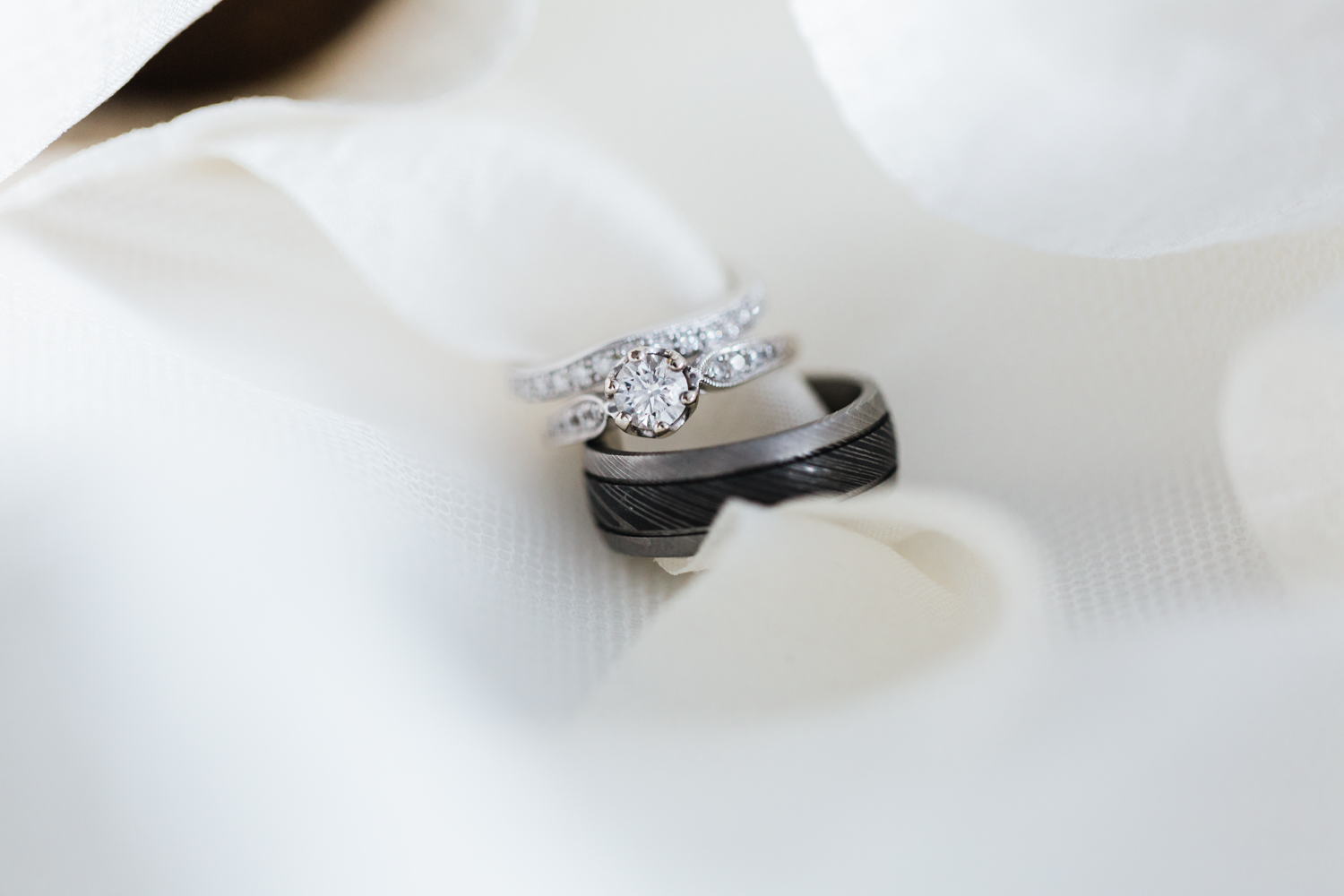 wedding rings on ribbon - md photographer and cinematographer