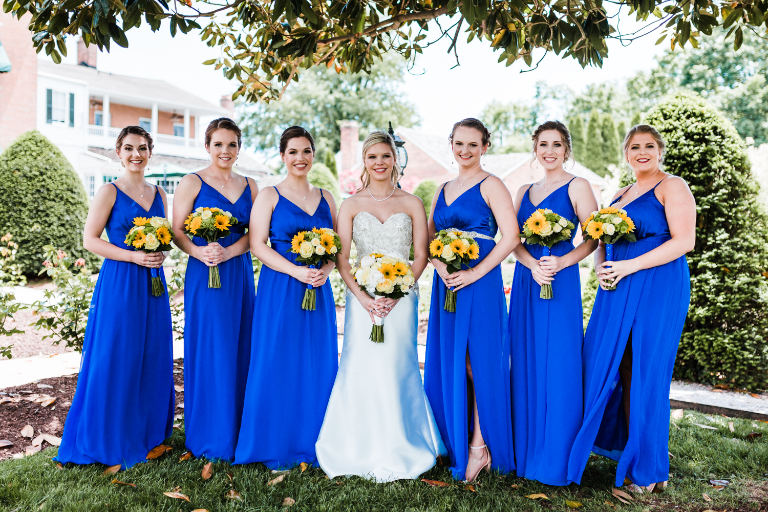 royal blue bridesmaids dresses - top cinematographer in Maryland
