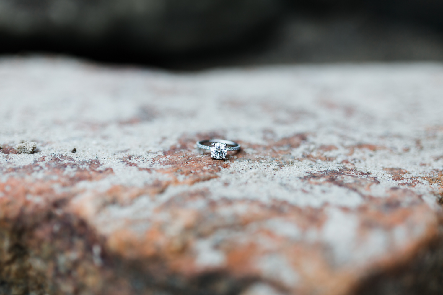 bayside engagement session in Annapolis - solitaire engagement ring with side accents