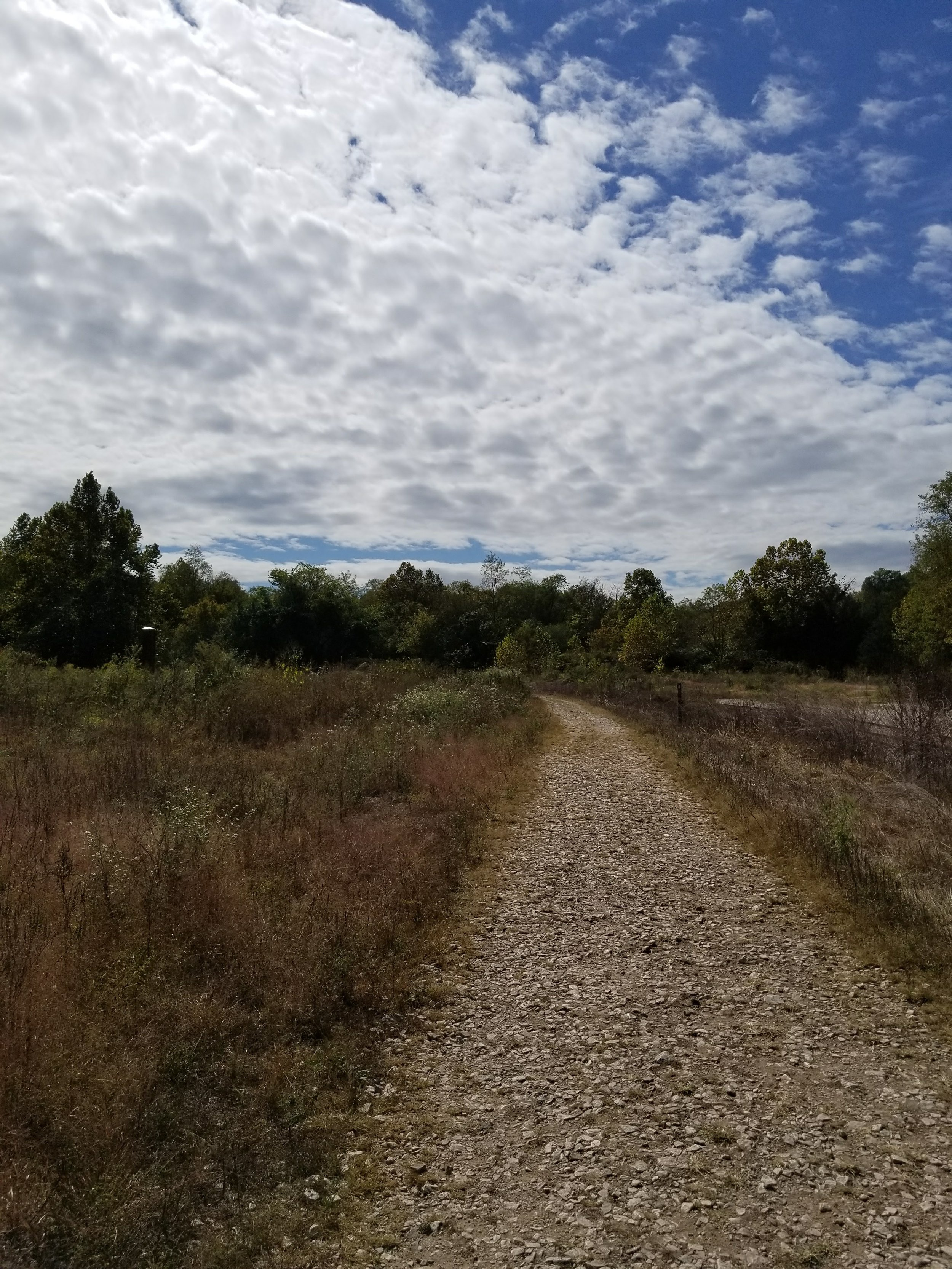 This trail at Mead's Quarry takes you past old lime kilns and into Knoxville's Urban Wilderness.