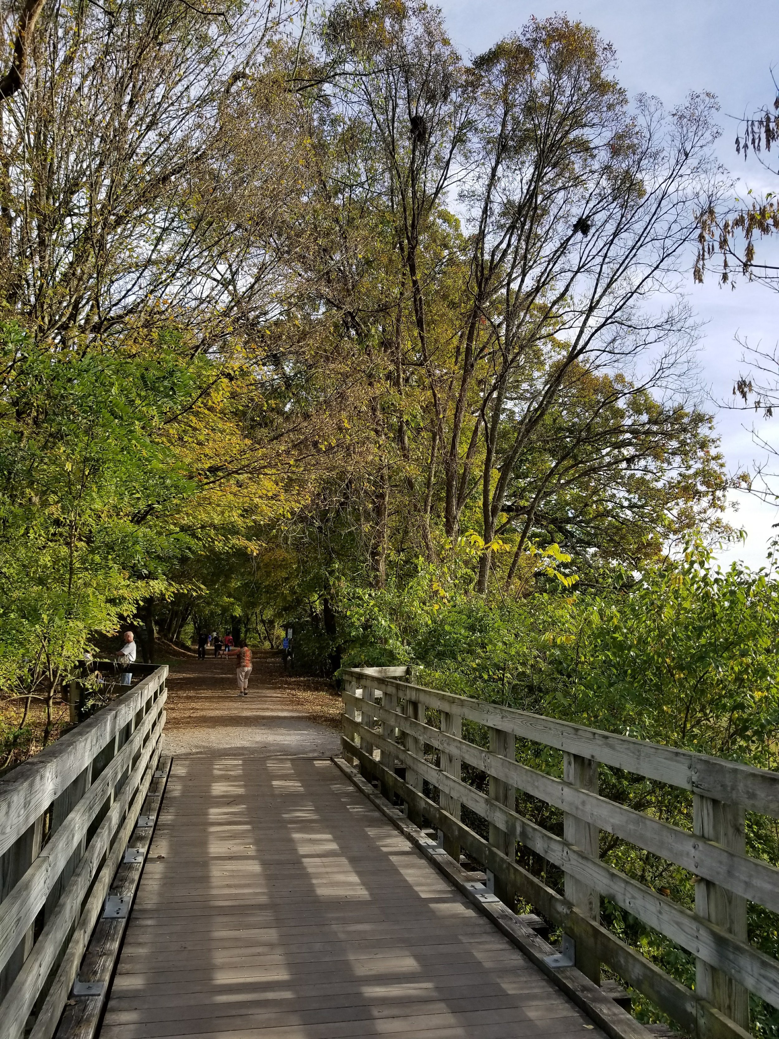 """The Virginia Creeper Trail follows an old railroad line where engines used to """"creep"""" up the mountain."""
