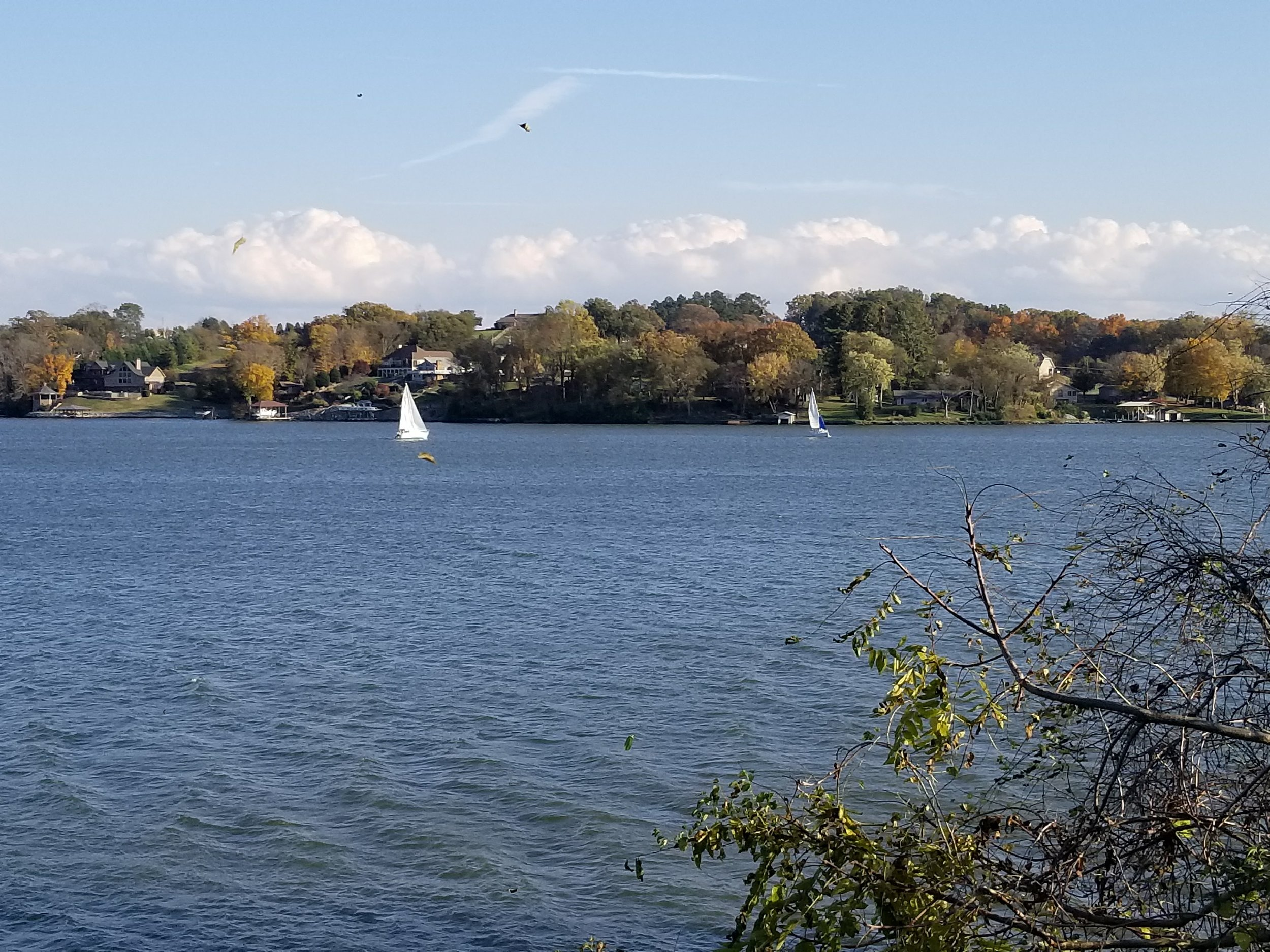Sailboats take to the waters of Ft. Loudoun Lake on a warm November Day.