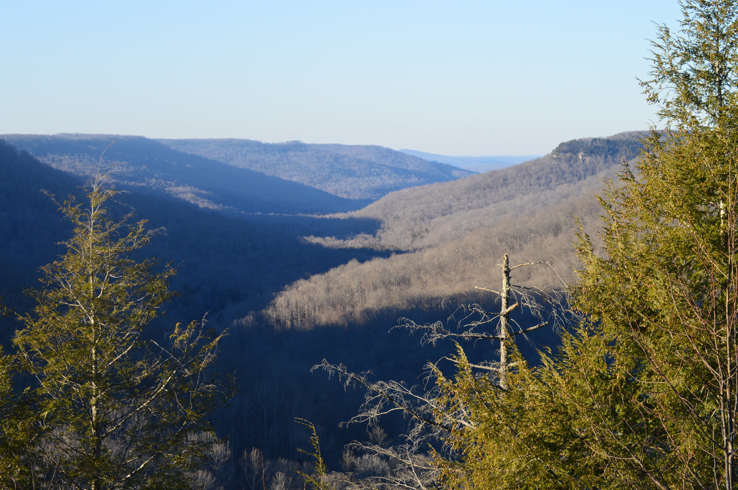 """The """"gulf"""" at Fall Creek Falls State Park is a seemingly endless expanse of wilderness, easily seen from overlooks along the park's scenic drive."""