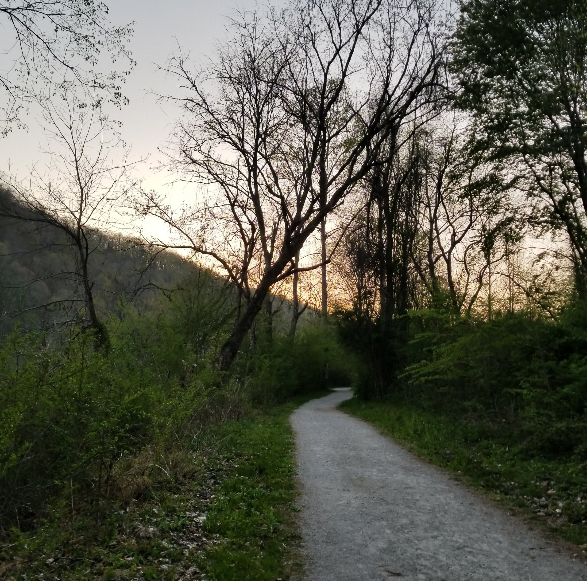 The Songbird Trail at Norris Dam State Park.