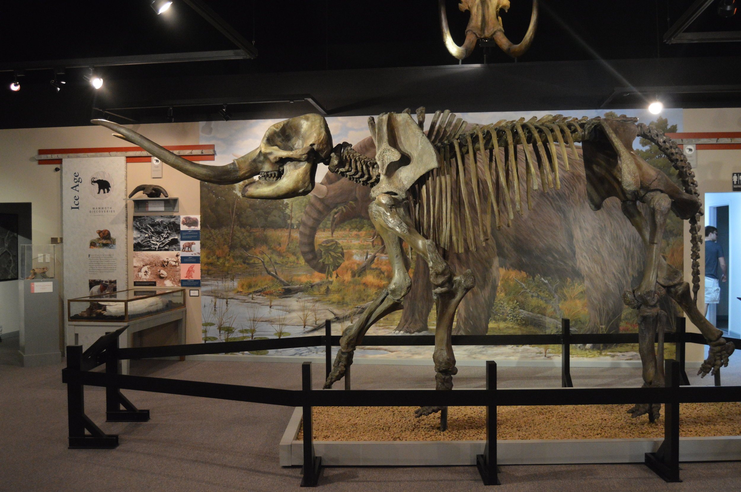 The Museum of the Middle Appalachians traces the regions history from the time mastadons and wolly mammoths roamed through the area's salt and gypsum mining era.