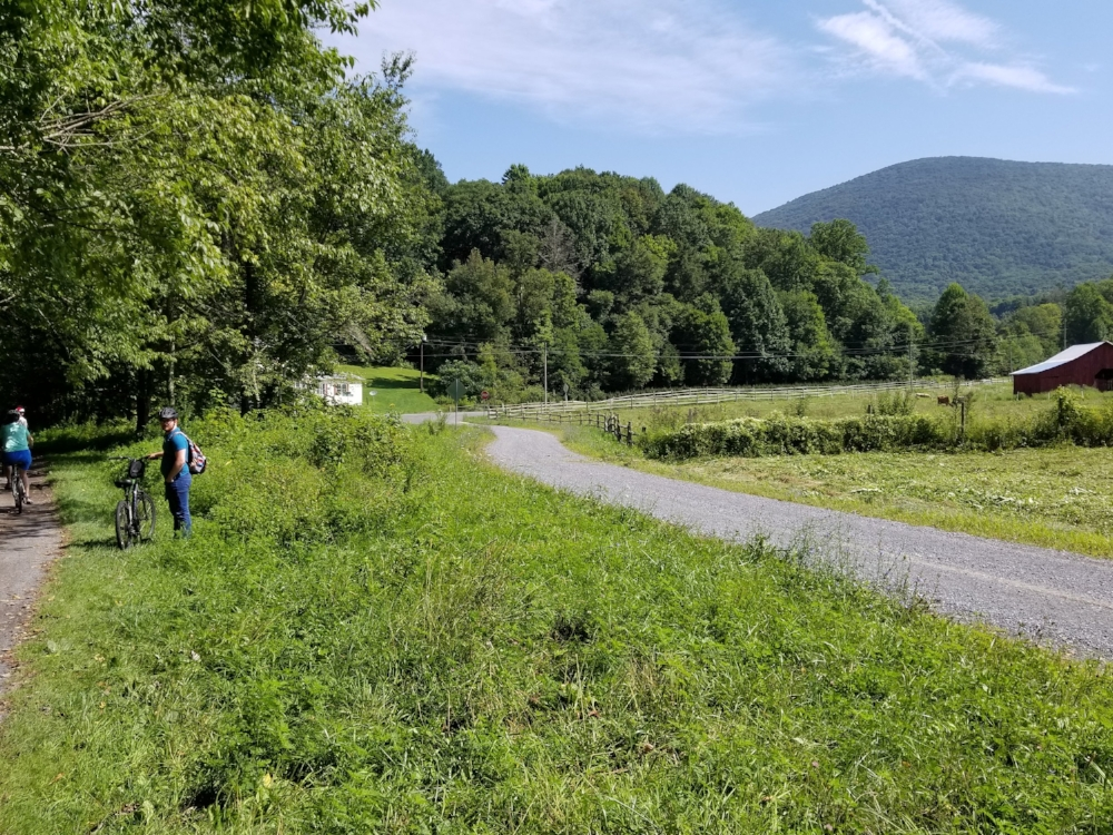 As you enter the community of Green Cove you get a view of Whitetop Mountain, the second highest peak in