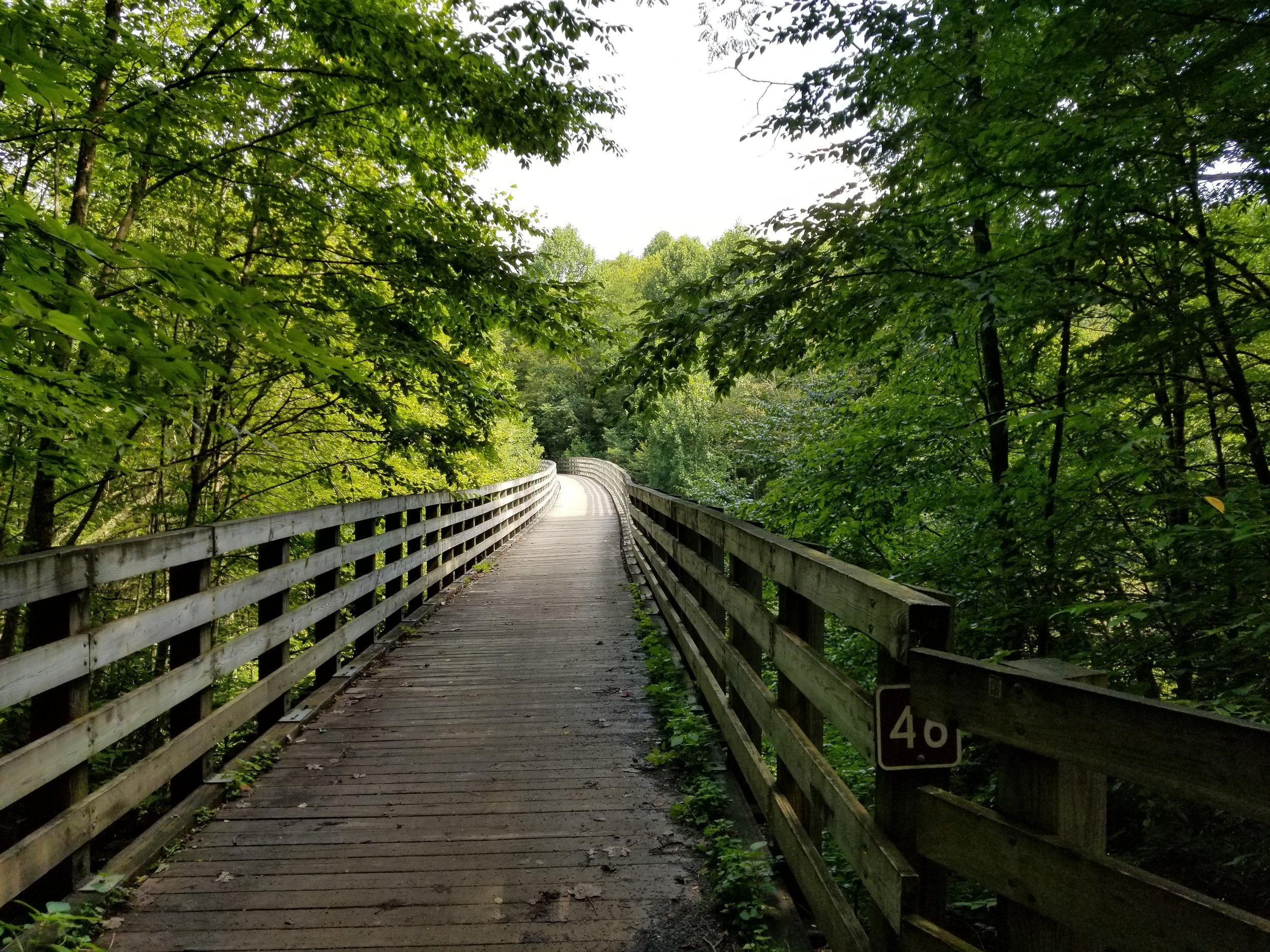 This bridge near the Whitetop Station on the Virginia Creeper Trail is 63 feet high ad 270 feet long.