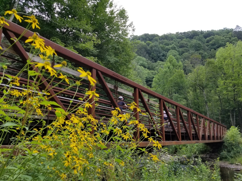 Much of the Virginia Creeper Trail passes through the Mt. Rogers National Recreation Area of the Jefferson National Forest.