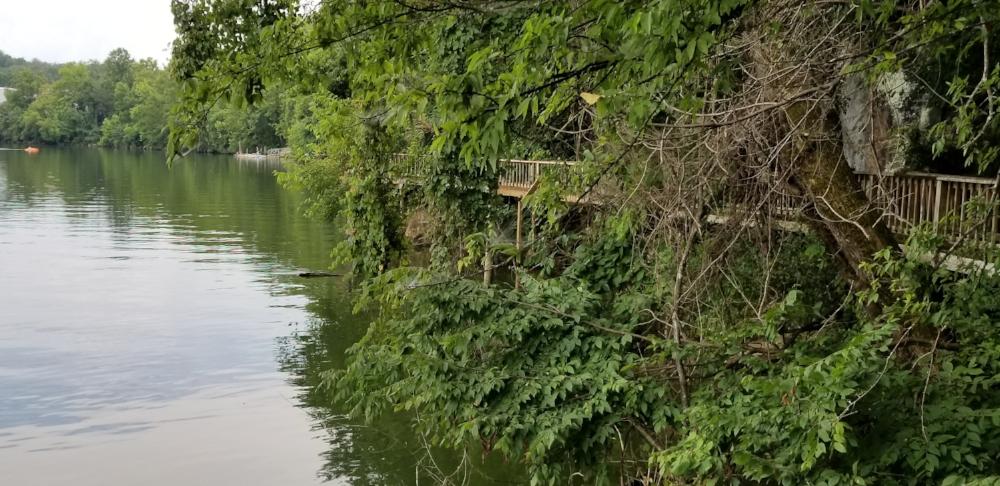 Tennessee River Boardwalk