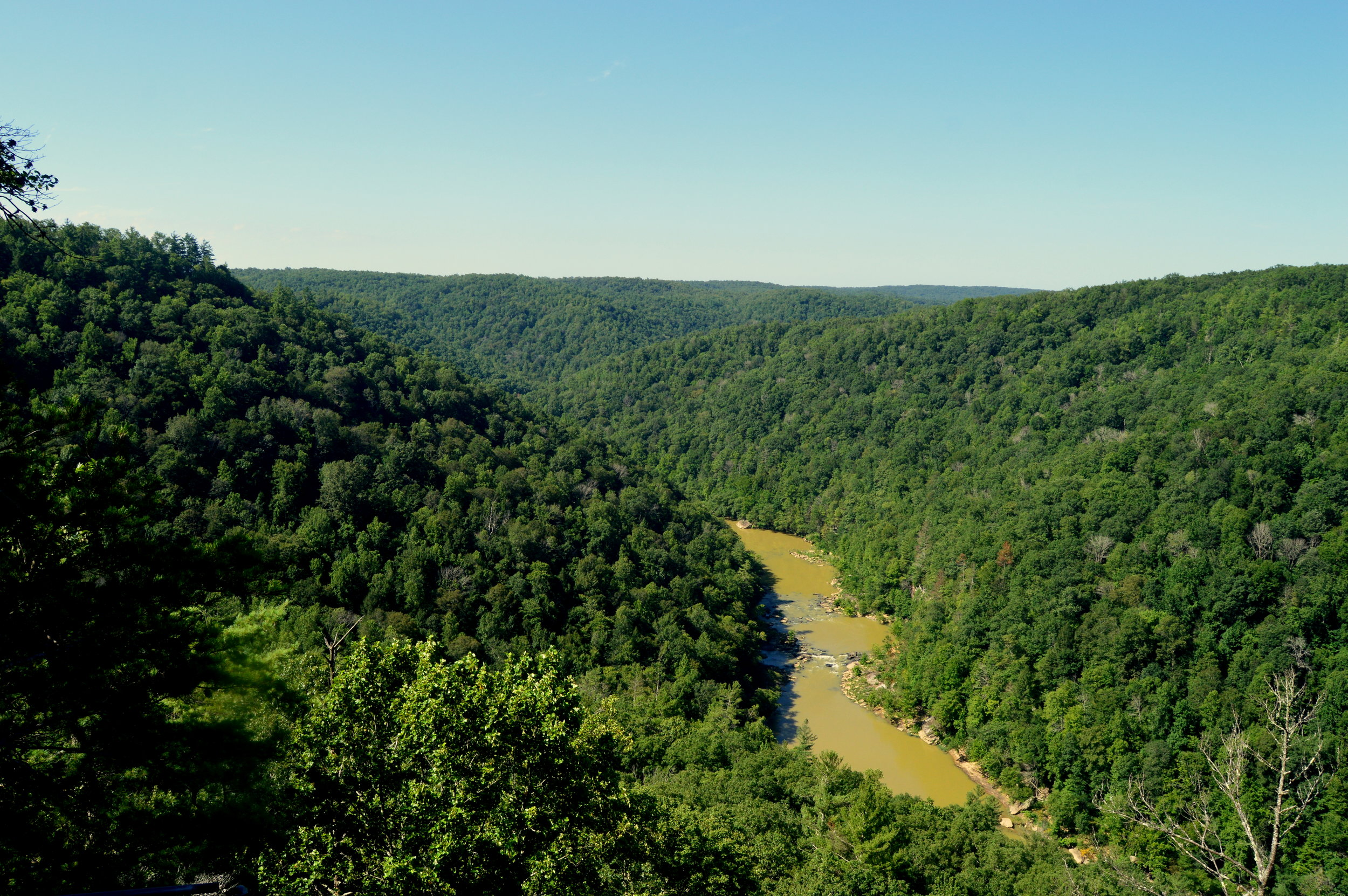 The East Rim Overlook is just a short drive off the main road through Big South Fork National River and Recreation Area. A paved trail takes you to the spot where you see a sprawling river gorge hundreds of feet below you.