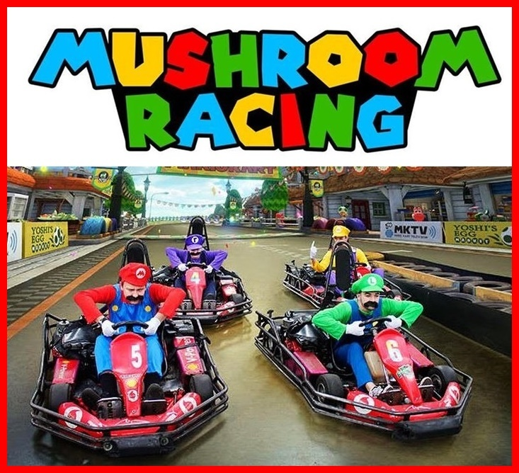 mushroom-racing-mario-go-karting-sydney41.jpg