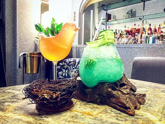 Have you decided where to grab a drink tonight? Are those art pieces or just cocktails 🍹? @botanistdining @fairmontpacific . . 今晚去哪喝?如果你还没有尝试过#botanist 的鸡尾酒,那一定要去试一试这像是艺术品一般的美酒🍷! . #drink #alcohol #cocktails #fairmont #fairmontpacificrim #fridaynight #bar #lounge #foodie #lifestyle #vancouver #bc #cananda #vancouverfoodies #vancouverfoodie #sharego #vancouverblogger #温哥华 #酒 #酒吧 #鸡尾酒 #バンクーバー #밴쿠버 #와인 #バー #바 #칵테일 #カクテル #加拿大