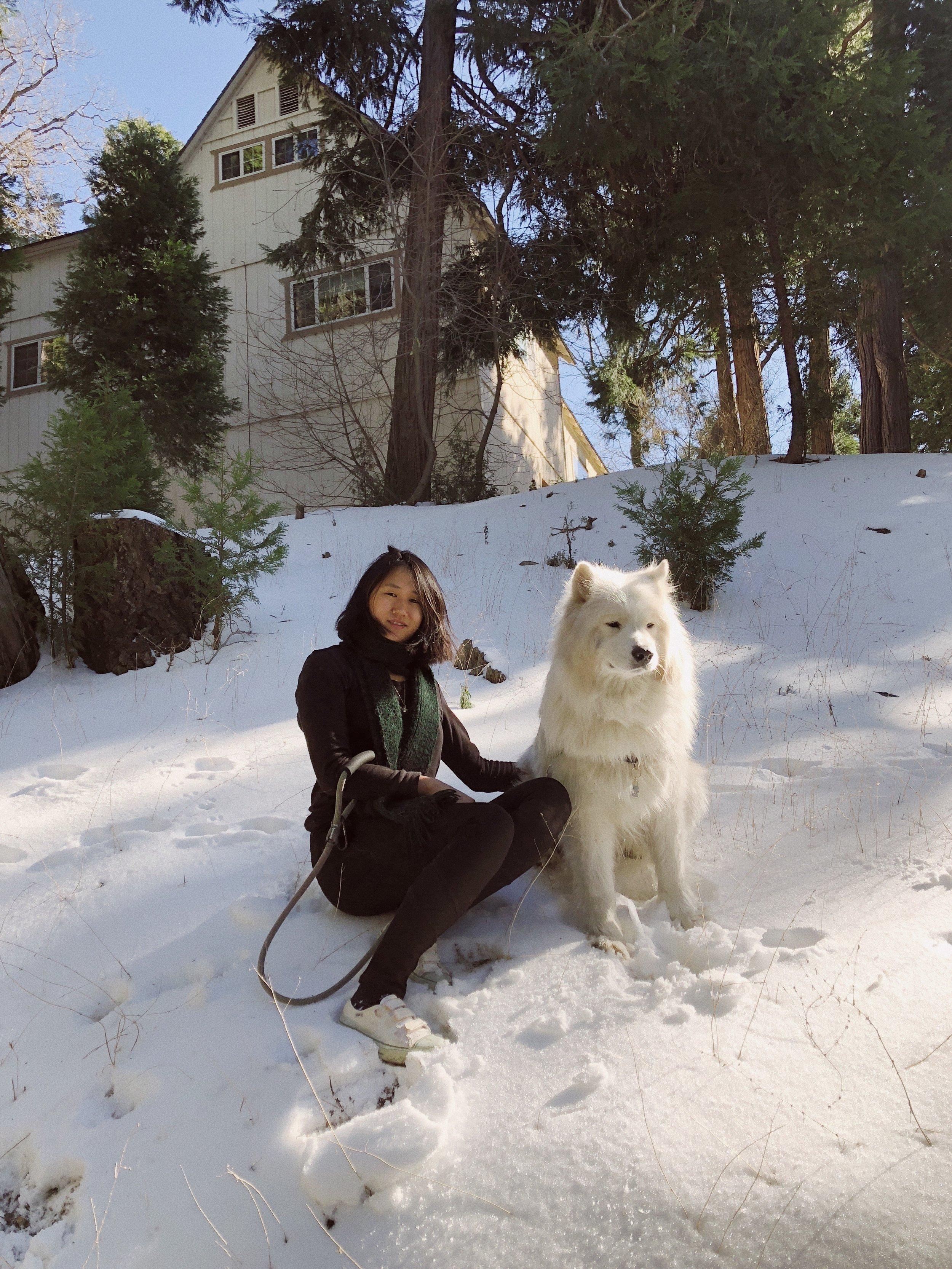 02.28.18_Lake Arrowhead_Samoyed Sumo_Ali Heiss_21.JPG