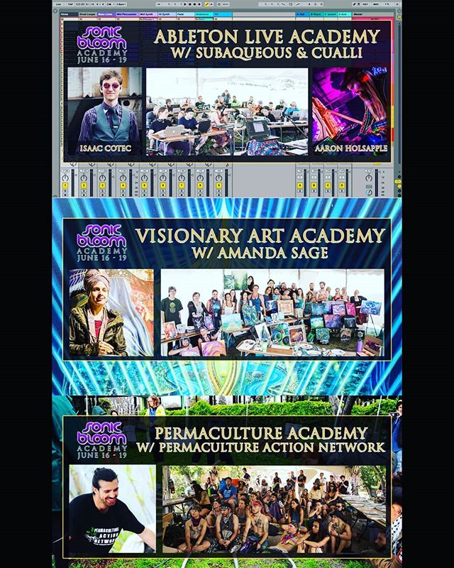 The SONIC BLOOM Academy starts tomorrow night and there are only a few more spots open... Only 4 more days until the early-arrival gates open to SONIC BLOOM! (link in @SONIC_BLOOM_ profile) #SONICBLOOM #SONICBLOOMacademy #AbletonLive #MusicProduction #MusicProductionClass #VisionaryArt #PaintingCourse #PermacultureDesign #Permaculture #PermacultureAction #HummingbirdRanch @Hummingbird.Ranch