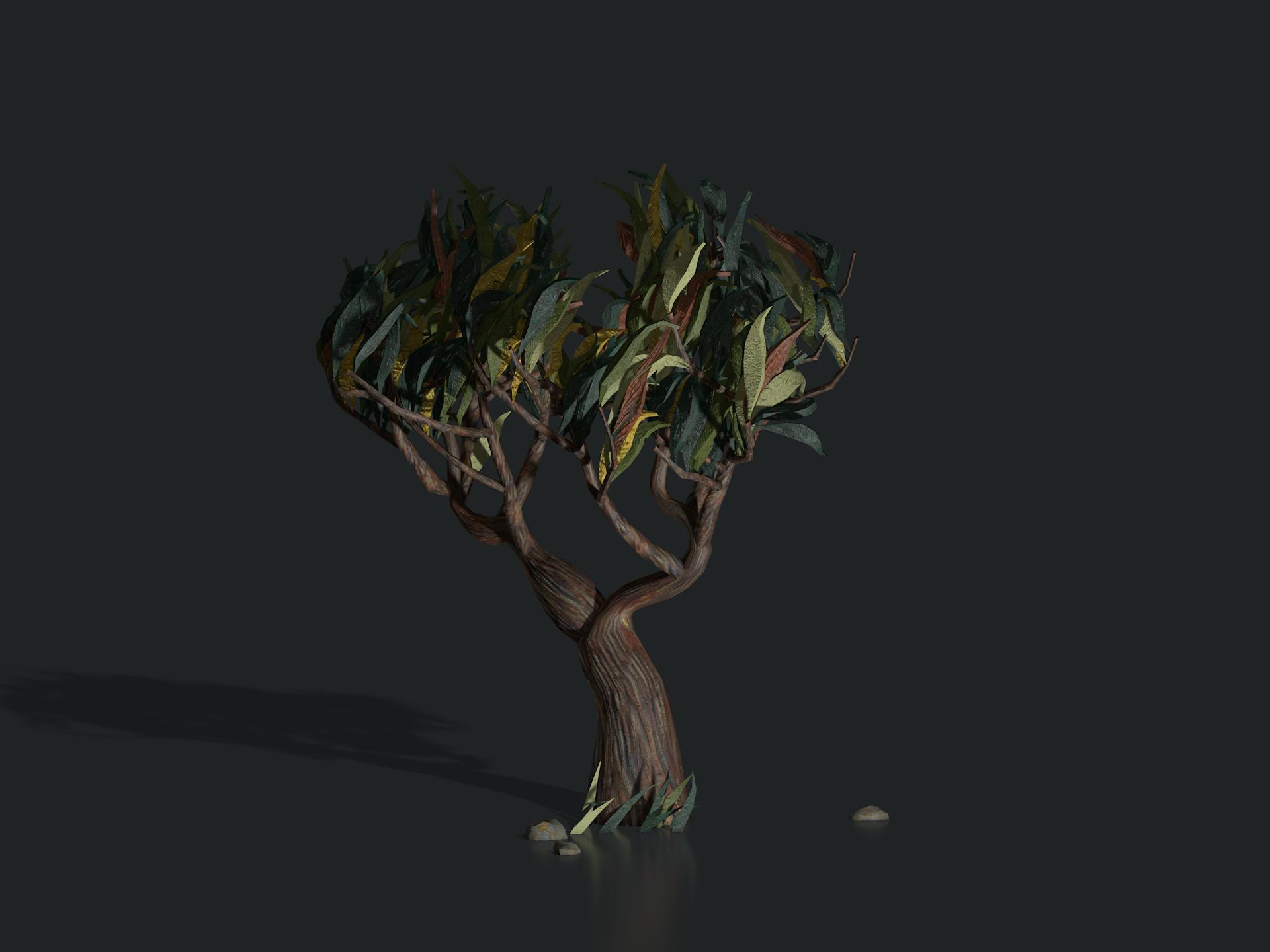 plants_saint_remy_tree1304.png