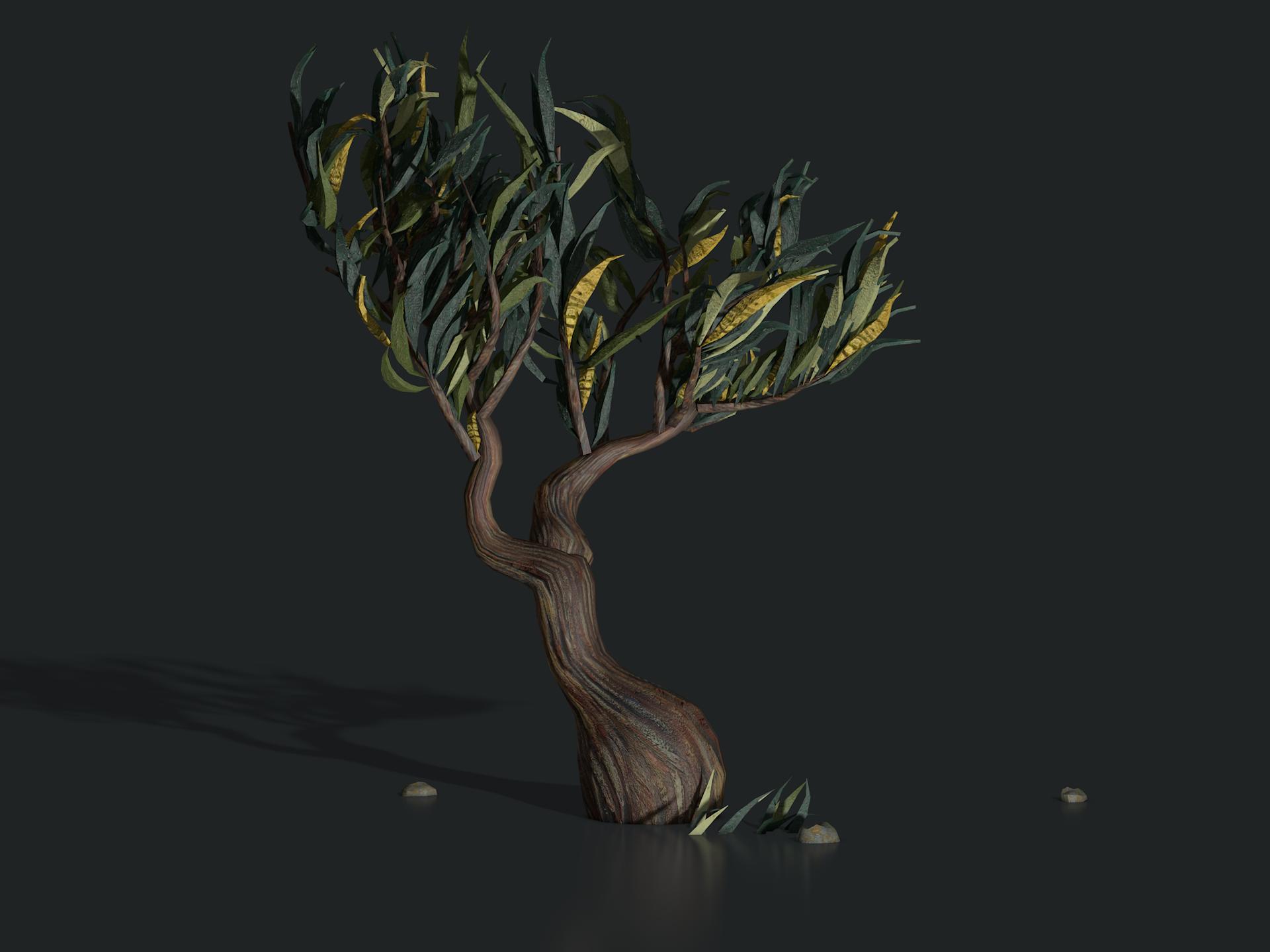 plants_saint_remy_tree1305.png