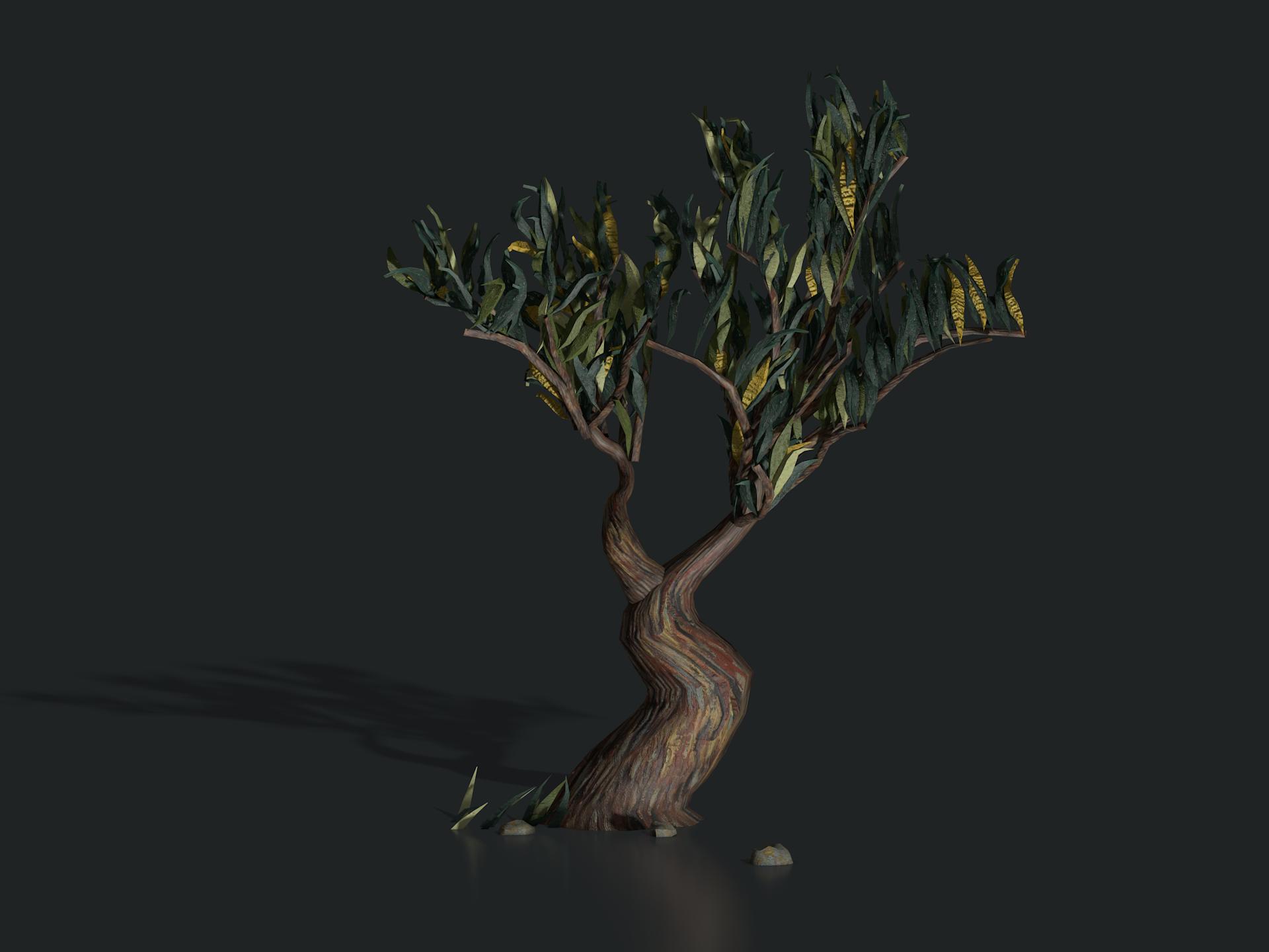 plants_saint_remy_tree1306.png