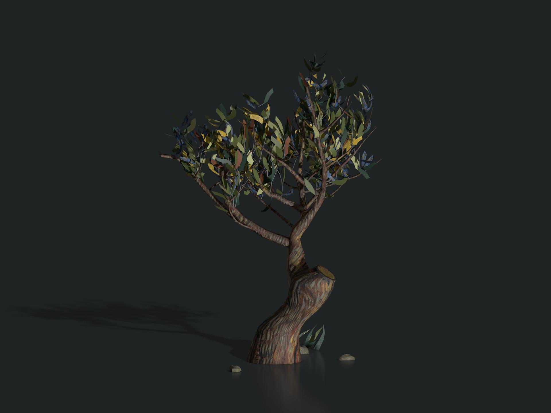 plants_saint_remy_tree1307.png