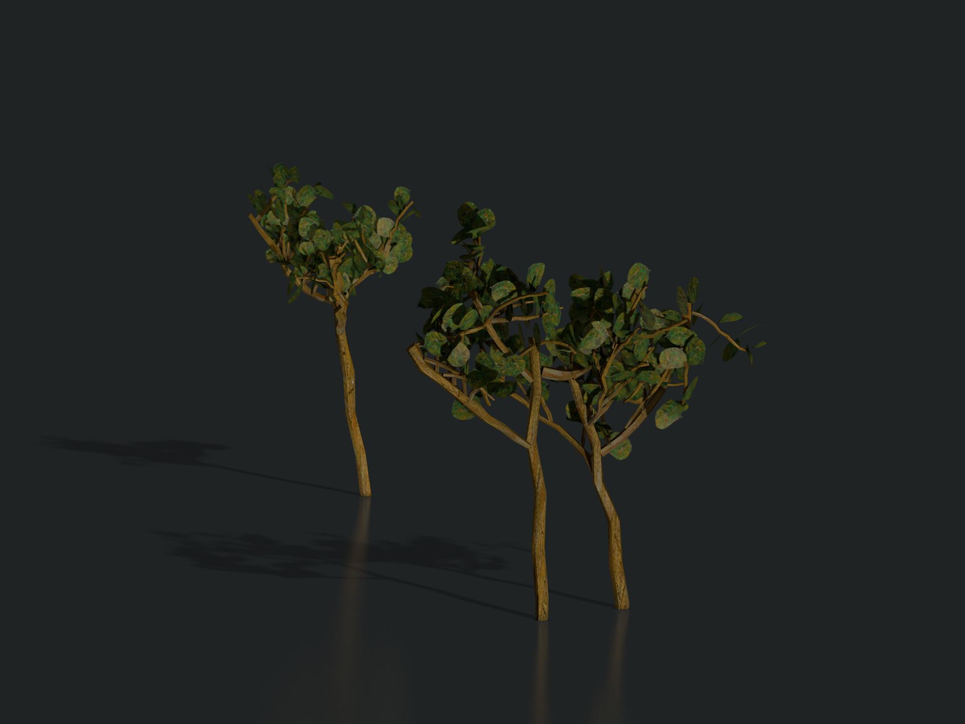 plants_arles_01_1302.png