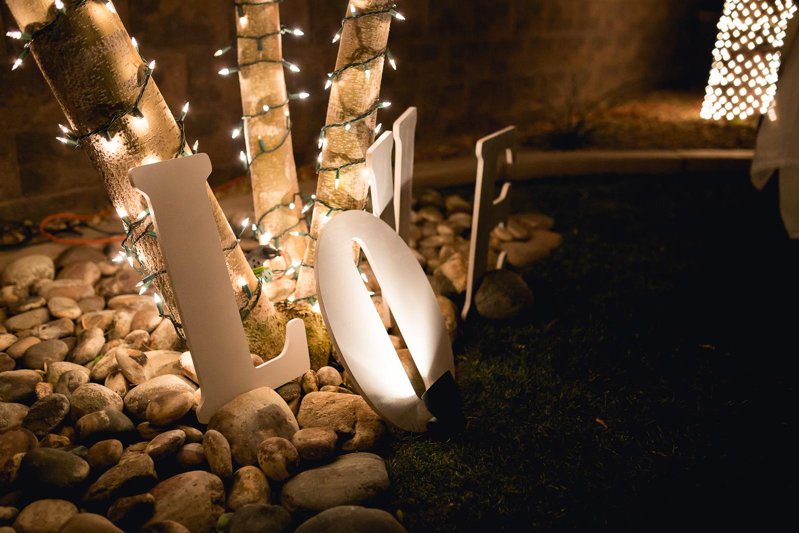 Cabrera-Wedding-Reception-31.jpg