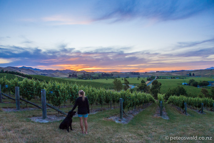 On the longest day in the NZ calendar the sun sets beautifully over the Marlborough Vineyards – tomorrow we start our adventure…
