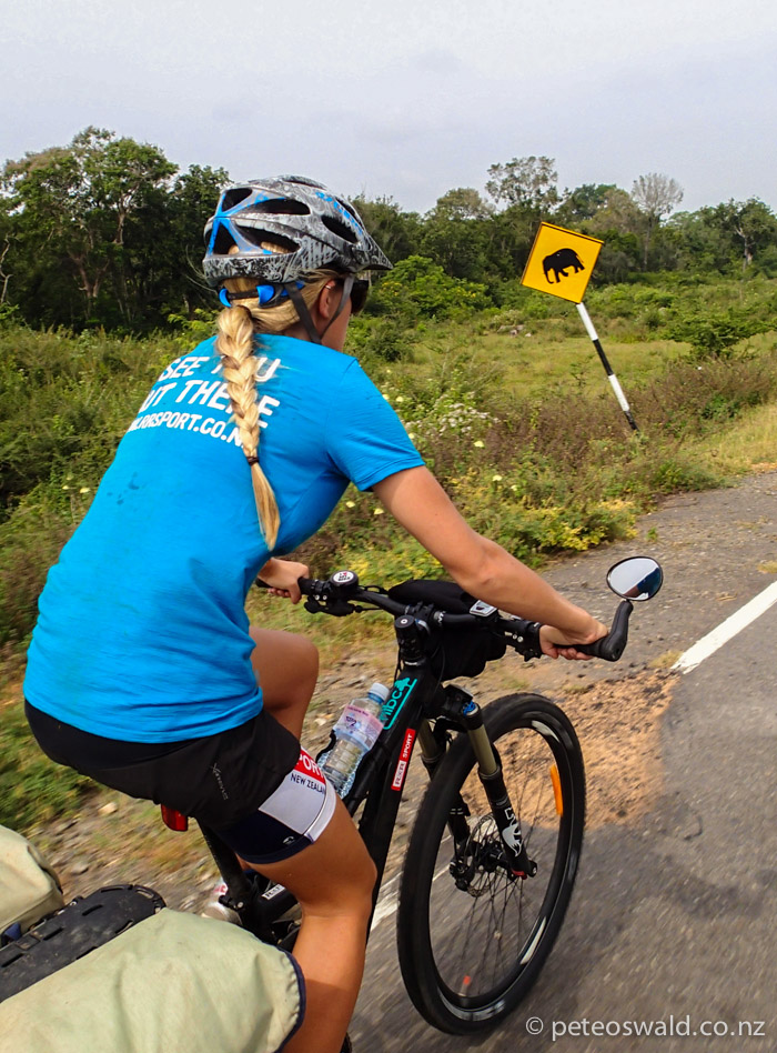 Biking through Yala National Park is not often done, reason being there are wild leopards, bears and elephants that have been know to fatally attack