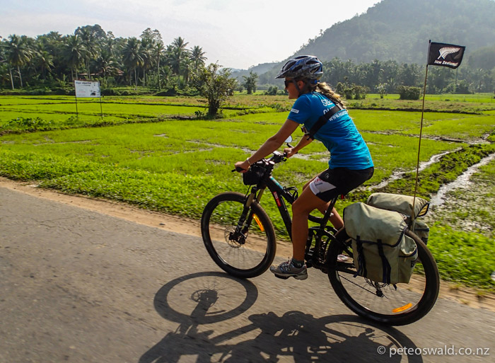 Back on the road cruising past rice paddies