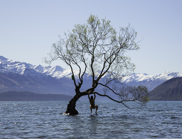 After our failed attempt we had quite a large night out. I lost a bet on a game of pool, resulting in having to monkey in the world famous tree in Lake Wanaka naked while tourist shot photos form the shore. Photo: Jakob Schfwieghofer