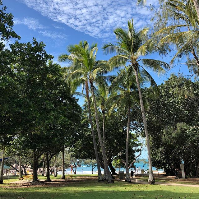 Taking a well deserved break in Magnetic Island. #fillyourcup #sharpenthesaw #break #qld #paradise #family #familytime #nofilter #magneticisland #qualitytime #selfcare #whereistheyoga #holiday #beach #palmtrees