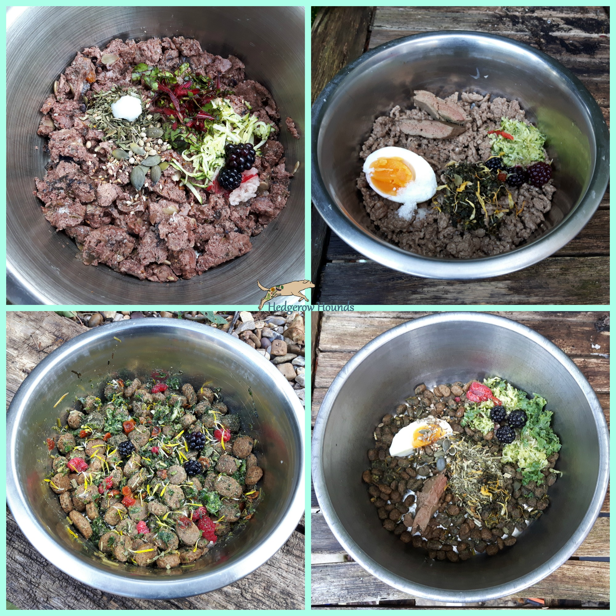 kibble & tinned meat.jpg