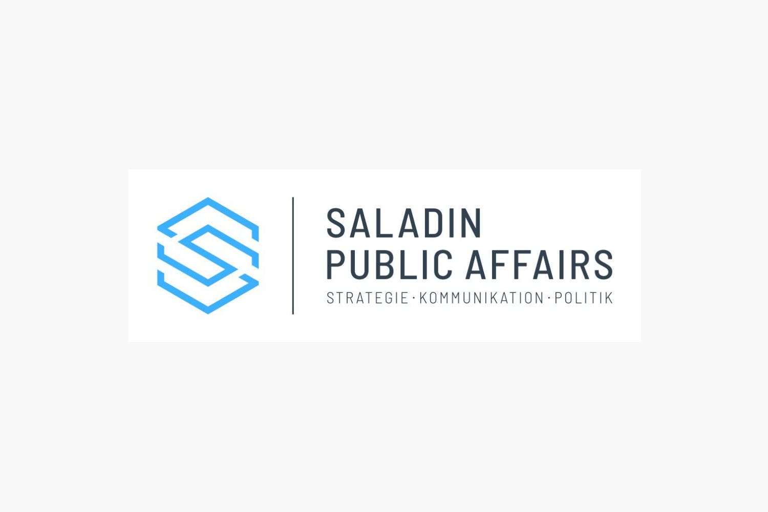 Saladin Public Affairs - Website Design, Search Engine Optimization SEO, CI/CD optimization and Content Marketing consulting for Saladin Public Affairs.
