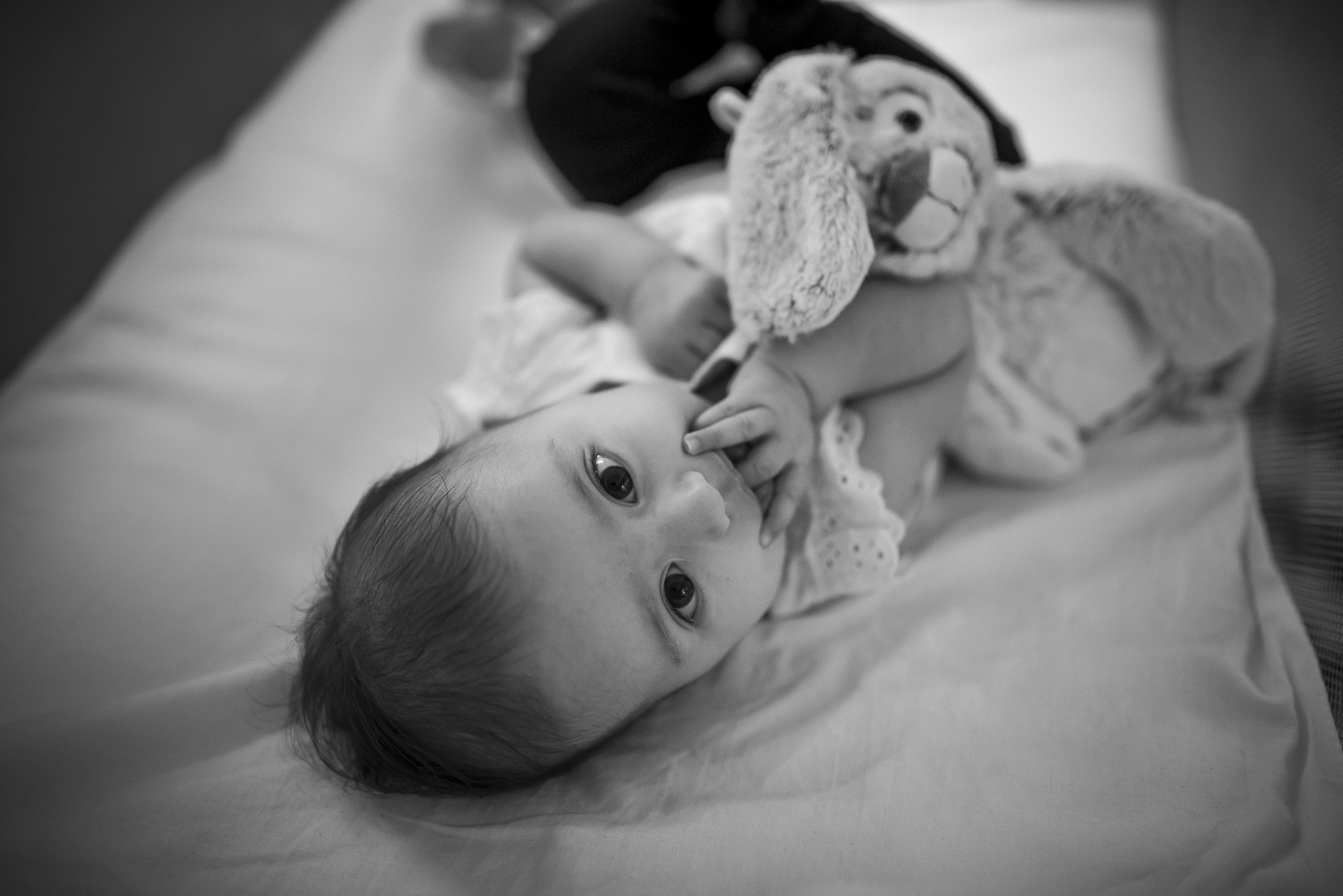 17.babygirlandbunny_Newborns&BabiesPortfolio_CMP.jpg