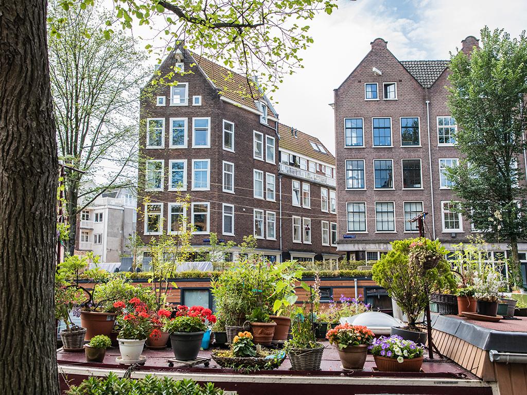 lilywanderlust-amsterdam-summer-gardens-11.jpg