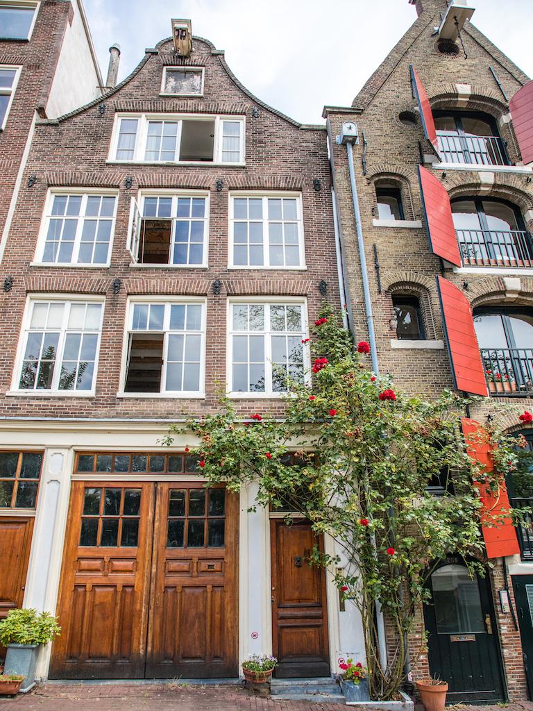 lilywanderlust-amsterdam-summer-gardens-10.jpg
